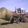450 x Round Bales of Top Quality Triticale Hay