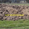 Chook Manure For Sale in Bulk