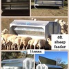 SHEEP GRAIN FEEDER 1 TONNE 8FT