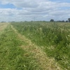 medic & Pasture Hay 8x4x3  50 m/t  x  625 KG Approx Bales Sell Off Baler From Paddock.