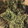 A1 NEW SEASON VETCH HAY FOR SALE IN 8X4X3's