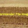 500mt Barley Straw 470kg 8x4x3 Bales