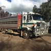 Nissan UD 22ft tray truck with Duncan 2x1 crate