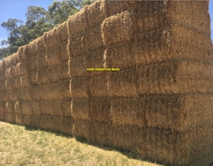 1000mt Barley Straw 8x4x3 Bales (Header Tailings)