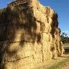 1 x Single Load Wheaten / Rye Hay For Sale in 8x4x3's