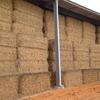 Wheaten Hay 1200 tonne