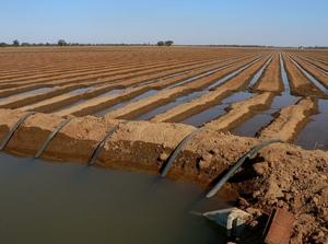 State politicising Murray Darling Basin Water