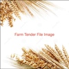 Frame Or Corack  Wheat Wanted x 1,200 m/t For All Year Round Supply