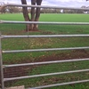 Cattle Crush and 8 Cattle Panels
