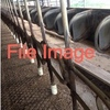 2nd Hand Dairy Plant Wanted 15 Per side Or more.