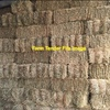 Large Quantity of Lucerne Hay in Small Squares