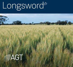 AGT Longsword Wheat Seed