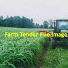 516 x Forage Sorghum Silage 440kg 4x4 Rounds