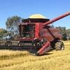 Case 2152 Rice Draper front for sale