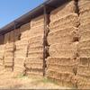 300 m/t Clover Hay in 8x4x3