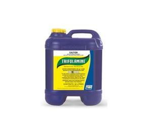 Trifolamine Selective Herbicide 20L