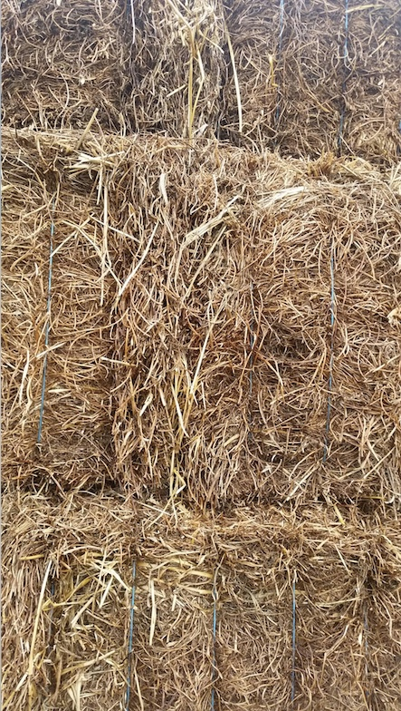 sale hairy vetch hay for