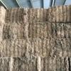 160 m/t Vetch Hay Shedded 8x4x3 Bales