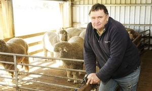 WoolProducers happy with WoolPoll panel members