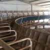 50 stand Fullwood rotary dairy complete