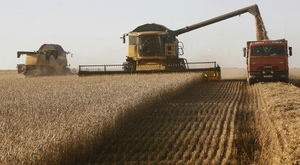 Black Sea Wheat crop forecast increases