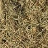 Rice Straw 500kg 8x4x3 Bales
