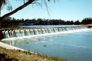 Cotton Australia disappointed in SA water mismanagement revelations