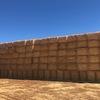 53mt Oaten Header Trail Straw  8x4x3 Bales  average 515kg