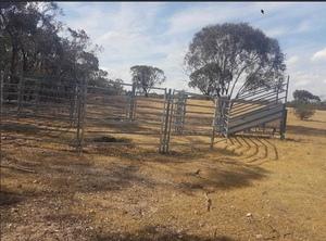 """Kattle Gear Cattle Yards  """"ONO"""""""