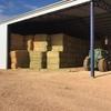Oaten & Wheaten Hay