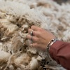 Farm to Fashion - Connection the supply chain