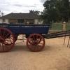 Bullock / Horse Wagon