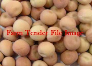 200 T Kasper Field Peas