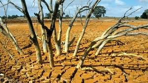 CBA pledges $2 million to help drought-affected Farmers