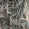 Wheaten/Rye  60/40% Hay 8x4x3 - 600 x 580 KG Approx Bales