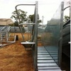 Steel Supplies Sheep Loading Ramp with Sidewalk - BRAND NEW
