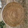 Wheaten, Rye and Clover Hay For Sale
