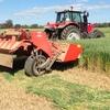 Good Oaten Hay for Sale in Rolls