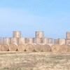 This seasons rye grass 4'6'' round bales