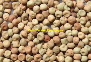 44mt Twilight Field Peas