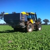 Grain market awakens from seasonal slumber