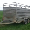 12'x 6' Major Tandem Trailer with Cattle Crate