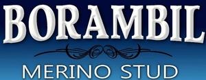 Borambil Merino's to $10,000
