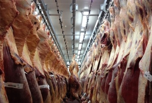 Infrastructure challenges in vital red meat expansion