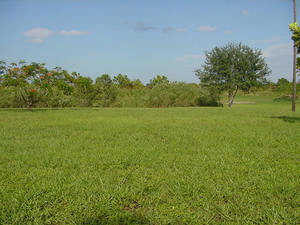 Wanted to Lease Rural Property for Growing Lucerne Hay long term.