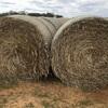 70 Barley, Rye & Rye Grass Mix Rolls