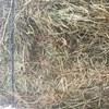 Clover, rye & oaten hay