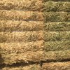 Freekah wheat straw -  Cut  when still green