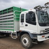 2002 Isuzu 950 SITEC 230 with 21 1/2' tray