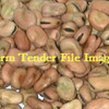 10mt Feed Beans For Sale Ex Farm or Del